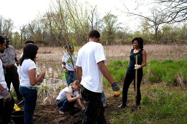 History Poster featuring the photograph First Lady Michelle Obama Helps Plant by Everett