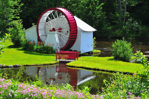 Waterwheel Poster featuring the photograph Franconia Notch Waterwheel by Catherine Reusch Daley