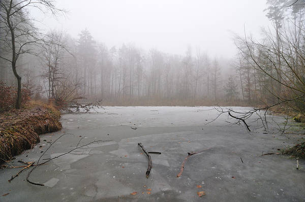 Winter Poster featuring the photograph Frozen Lake In Winter by Matthias Hauser