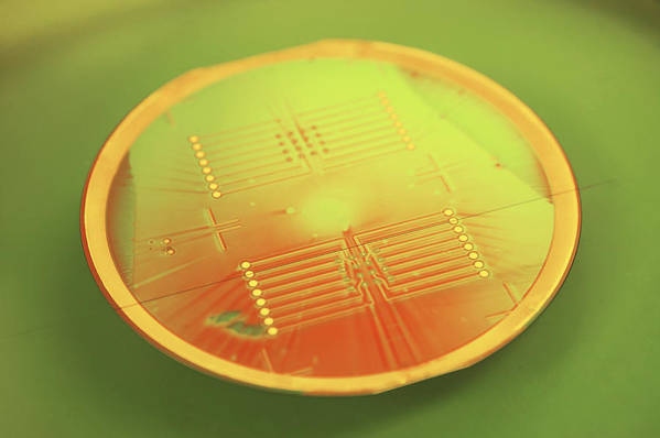 Wafer Poster featuring the photograph Mems Production, Gold Metal Circuitry by Colin Cuthbert