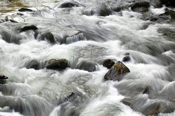 Water Poster featuring the photograph Mountain Stream Smokies by Rich Franco