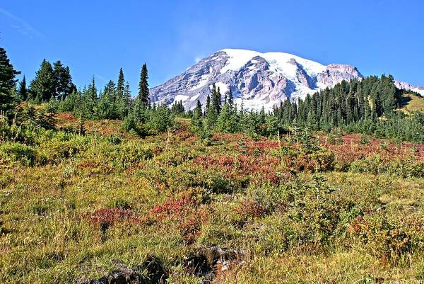 Mt. Poster featuring the photograph Paradise In Fall On Mt. Rainier 2 by Rob Green