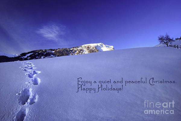 Winter Poster featuring the photograph Quiet And Peaceful Christmas by Sabine Jacobs