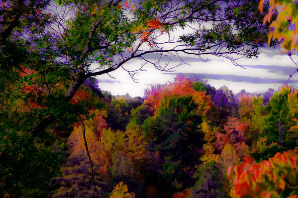 Smoky Mountains Poster featuring the photograph Rainbow Treetops by DigiArt Diaries by Vicky B Fuller