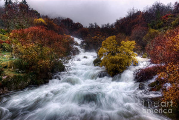 Autumn Poster featuring the photograph Rapid Waters by Carlos Caetano