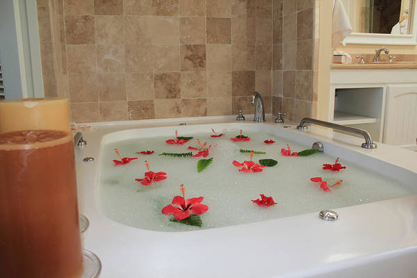 Bath Tub Poster featuring the photograph Tub Of Hibiscus by Shane Bechler