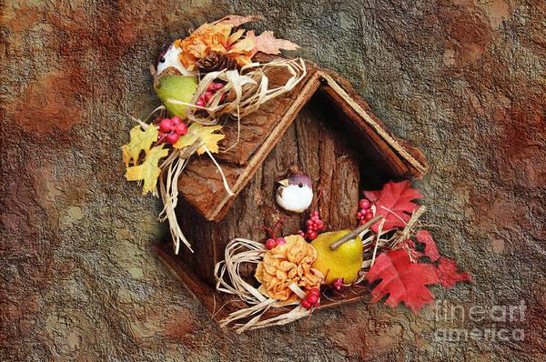 Bird Poster featuring the photograph Tweet Little Bird House by Andee Design