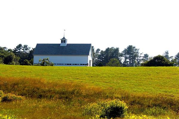 Harpswell Poster featuring the photograph White Barn by Robbie Basquez