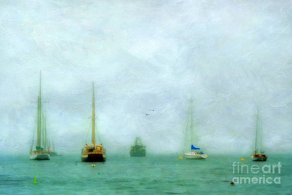 Acadia Poster featuring the photograph Into The Fog by Darren Fisher