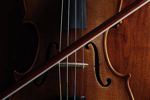 Horizontal Poster featuring the photograph Violin by Nichola Evans