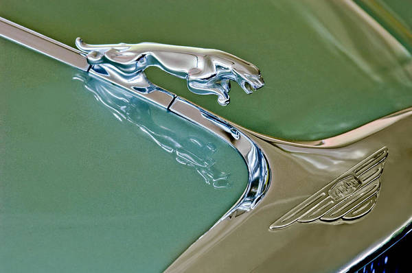 1966 Jaguar Mark X 4.2 Poster featuring the photograph 1966 Jaguar Hood Ornament by Jill Reger