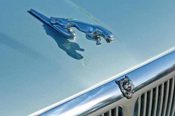 1995 Jaguar Xj6 Sedan Poster featuring the photograph 1995 Jaguar Xj6 Sedan Hood Ornament by Jill Reger