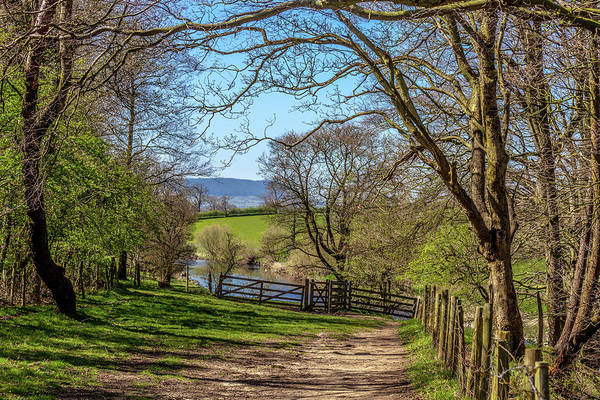 Agriculture Poster featuring the photograph A Country Pathway In Northern England by W Chris Fooshee