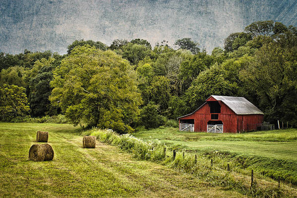 Landscape Poster featuring the photograph A Farmer's Pride by Elizabeth Wilson