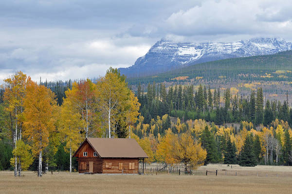 Glacier Poster featuring the photograph Autumn Mountain Cabin In Glacier Park by Bruce Gourley