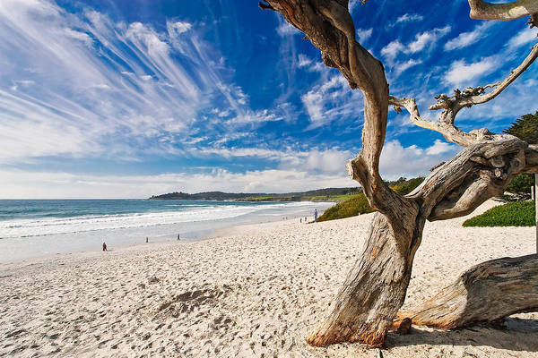 Beach Poster featuring the photograph Beach View Carmel By The Sea California by George Oze