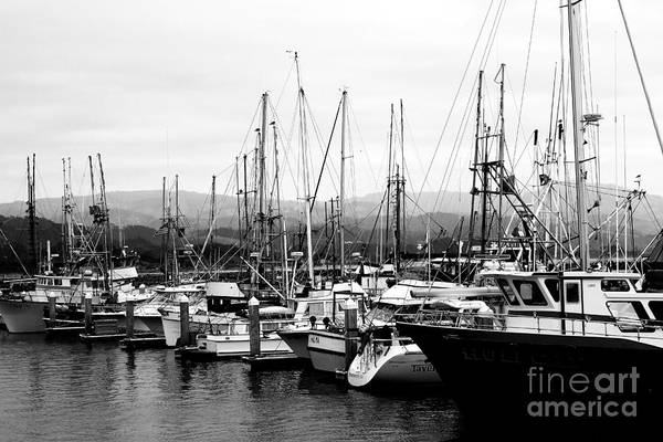 Black And White Poster featuring the photograph Fishing Boats . 7d8208 by Wingsdomain Art and Photography