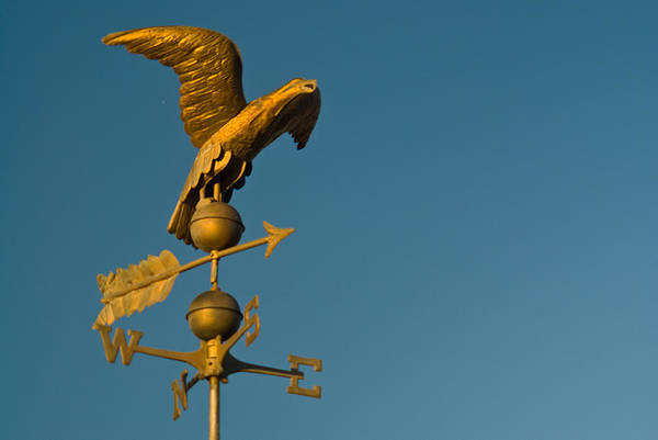 Golden Poster featuring the photograph Golden Eagle Weather Vane by Douglas Barnett
