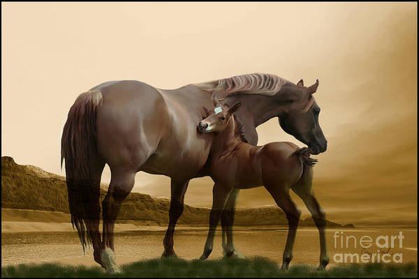 Horse Poster featuring the painting Inherit The Wind by Corey Ford