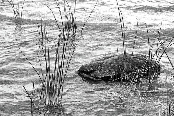 Lake Huron Shoreline Poster featuring the photograph Lake Huron Shoreline 10 Bw by Mary Bedy
