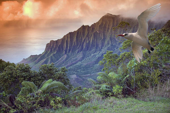 Above Poster featuring the photograph Na Pali Coast by Dave Fleetham - Printscapes