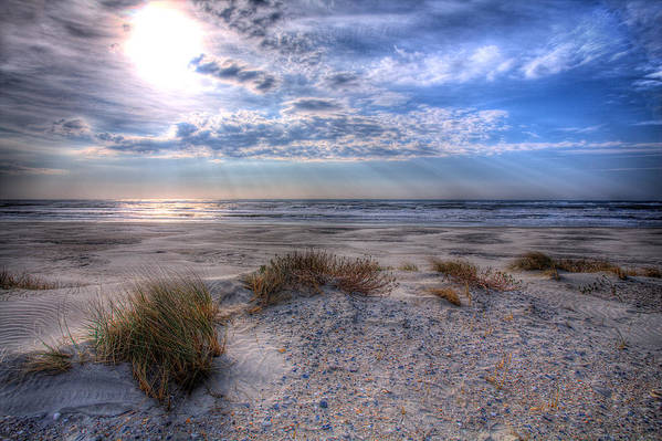 North Carolina Poster featuring the photograph Ocracoke Winter Dunes II by Dan Carmichael