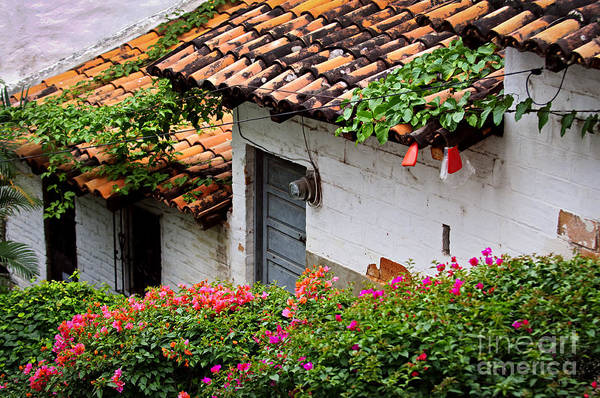 Puerto Vallarta Poster featuring the photograph Old Buildings In Puerto Vallarta Mexico by Elena Elisseeva
