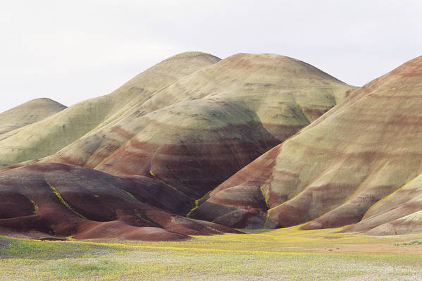 Banded Poster featuring the photograph Painted Hills by Greg Vaughn - Printscapes