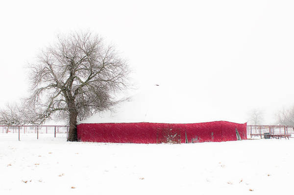 Nature Poster featuring the photograph Red Barn In Winter by Tamyra Ayles