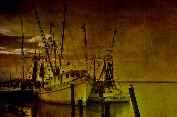 Shrimp Boat Poster featuring the photograph Shrimpboats In Apalachicola by Susanne Van Hulst