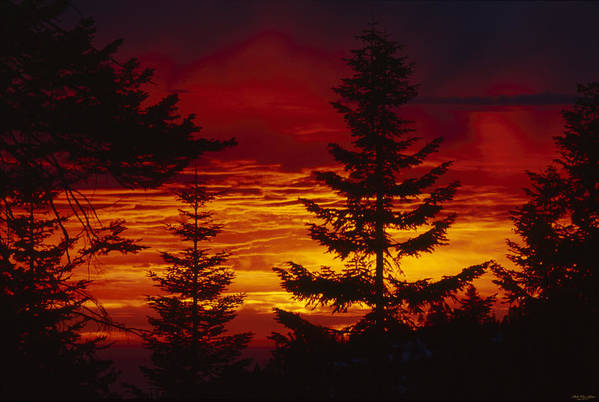 Sequoia National Park California Poster featuring the photograph Sky Of Fire by Soli Deo Gloria Wilderness And Wildlife Photography