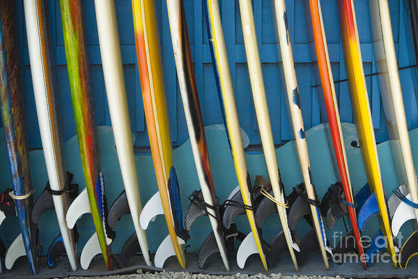Afternoon Poster featuring the photograph Surfboards by Dana Edmunds - Printscapes