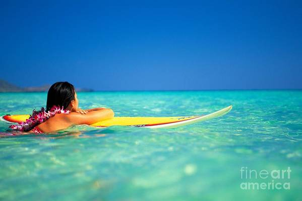 Blue Poster featuring the photograph Surfing Serenity by Dana Edmunds - Printscapes