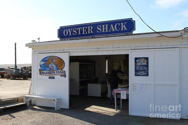 Oyster Poster featuring the photograph The Oyster Shack At Drakes Bay Oyster Company In Point Reyes California . 7d9832 by Wingsdomain Art and Photography