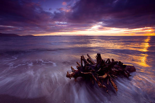 Sunset Poster featuring the photograph Tide Driven by Mike Dawson