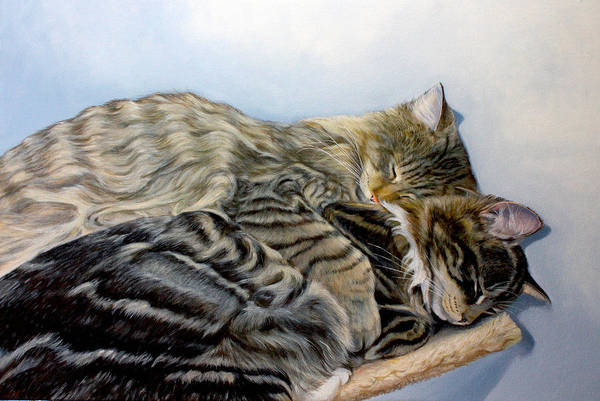 Cats Poster featuring the painting True Love by Susana Falconi