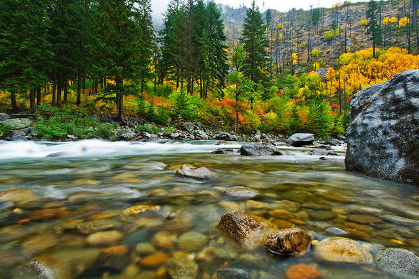 Fall Poster featuring the photograph Wenatchee River by Dan Mihai