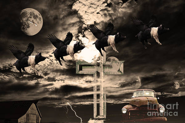 Wingsdomain Poster featuring the photograph When Pigs Fly by Wingsdomain Art and Photography