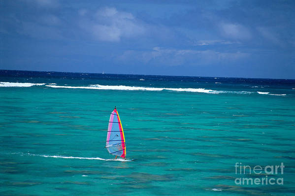 A10f Poster featuring the photograph Windsurfing In Clear Ocea by Allan Seiden - Printscapes