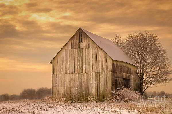 Barn Poster featuring the photograph Yellow Barn, Yellow Sunset by Robert Gardner