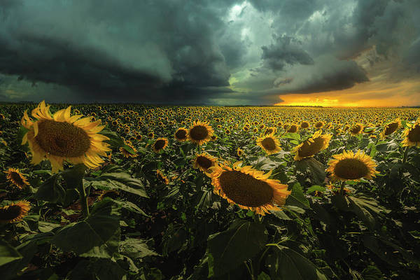 Thunderstorm Poster featuring the photograph Wrong Side Of Heaven by Aaron J Groen