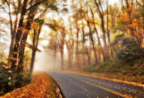 Blue Ridge Parkway Poster featuring the photograph Foggy Fall Wonderland - Blue Ridge Parkway I by Dan Carmichael