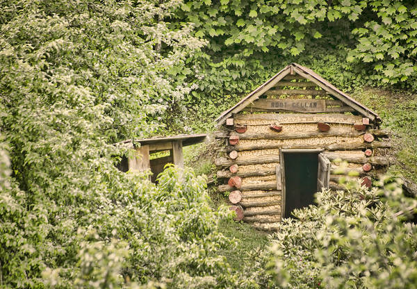 Rustic Poster featuring the photograph The Root Cellar by Heather Applegate