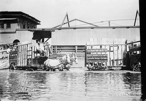 1900s Poster featuring the photograph Flooding On The Mississippi River, 1909 by Library of Congress