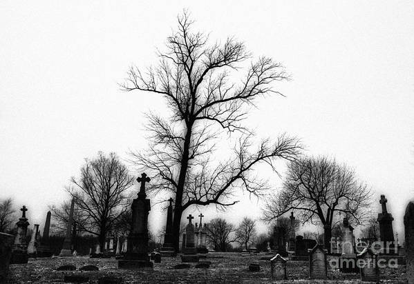 Black & White Infrared Photography Poster featuring the photograph Leaning Crosses by Jeff Holbrook