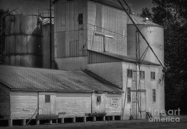 Old Poster featuring the photograph The Feed Mill by Tamera James