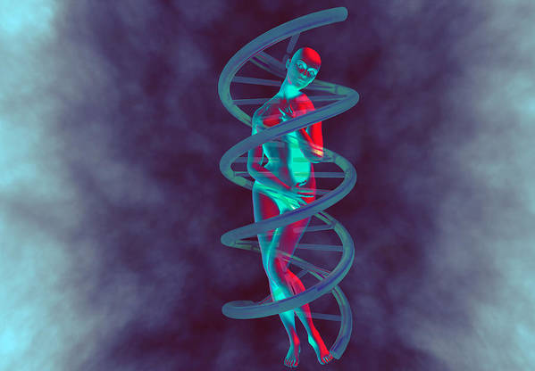 Double Helix Poster featuring the photograph Woman And Dna by Christian Darkin