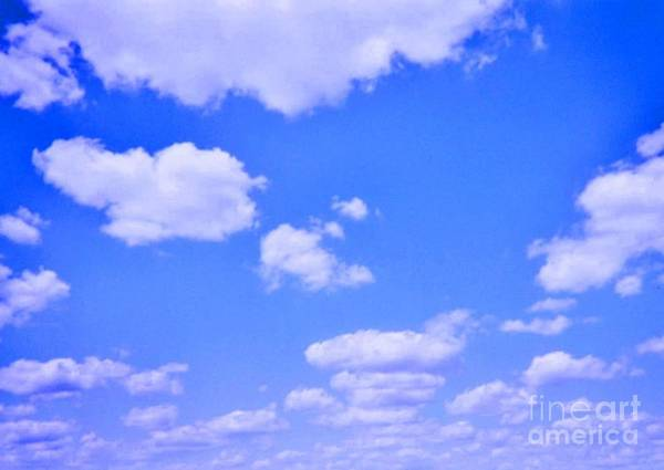 Sky Poster featuring the photograph Blue Sky by JoNeL Art