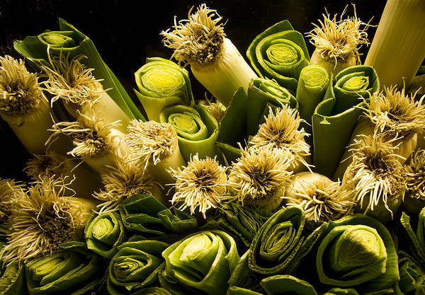 Jean Noren Poster featuring the photograph Leeks by Jean Noren