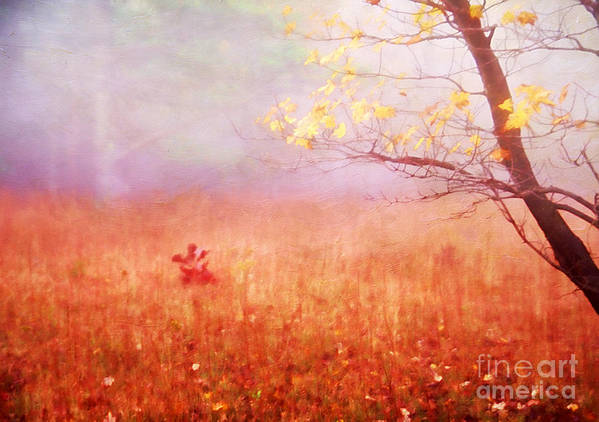 Aged Poster featuring the photograph Autumn Dreams by Darren Fisher